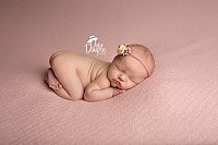 newborn baby girl on pink backdrop in tushy up pose