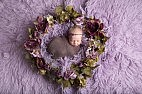 Newborn Baby surrounded by purple floral flowers