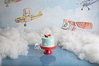 Airplane 1st Brithday Session